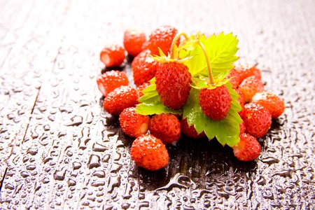 Wood strawberries (Fragaria  vesca) on wet textured table photo