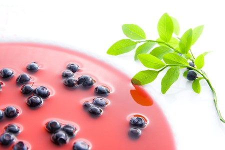 Blueberries on plate with decoration - blueberry soup. Stock Photo - 7302887