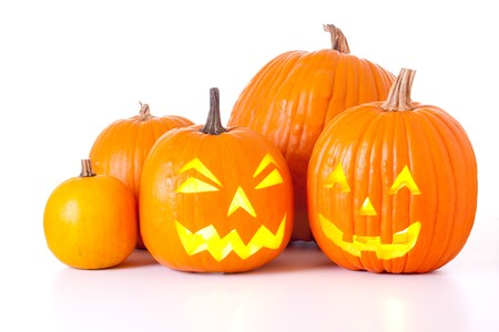 Viele orange Halloween Kürbisse und Jack-O-Laternen isolated on white Background. Standard-Bild