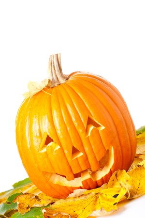 Carved Halloween Jack O Lantern with autumn foliage isolated on white background. Stock Photo - 7944818