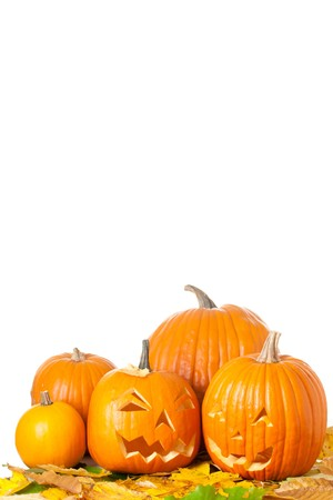 Carved Halloween Jack O Lanterns with autumn foliage isolated on white background.