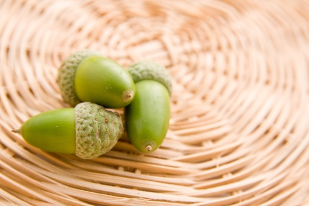 Freshly picked whole green acorns on wooden table. photo