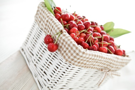 homegrown: White wooden basket full of delicious home-grown cherries.