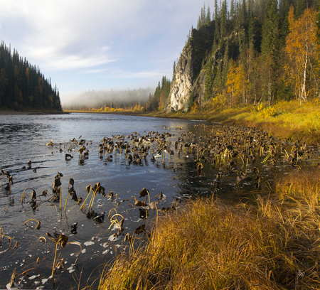 Clean pure water mountain water river brooks lakes Stock Photo