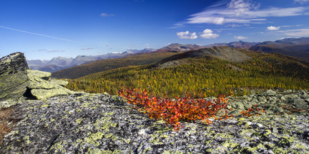 urals: Ural autumn landscape - snow-capped peaks, mountain forests, yellow foliage, transparent cold rivers
