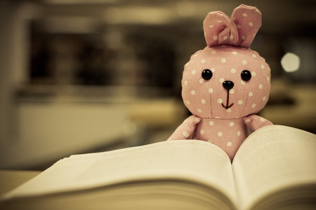 cute rabbit doll reading a book Stock Photo