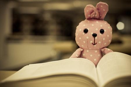 cute rabbit doll reading a book Stock Photo