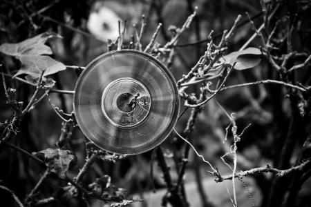 abandon compact disc Stock Photo - 15395264