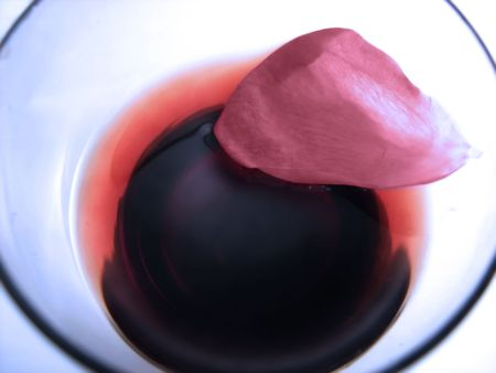rose petal floating in the cocktail glass photo