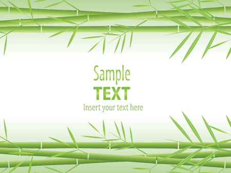 sample text: Bamboo vector background Illustration