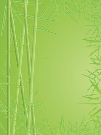 bamboo vector background Vector