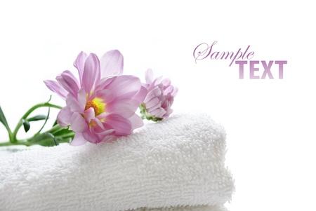 productos de belleza: Toalla limpia con flores frescas  Foto de archivo