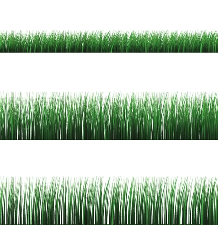 3d set of  green grass isolated over white Stock Photo - 9114884