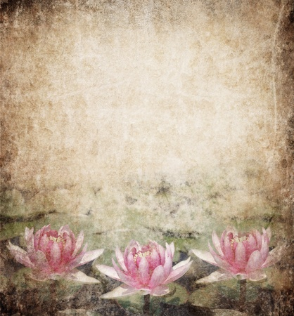 Water Lily on dirty grunge textured background photo