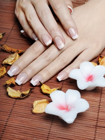 nails manicure: Female hands with french manicure