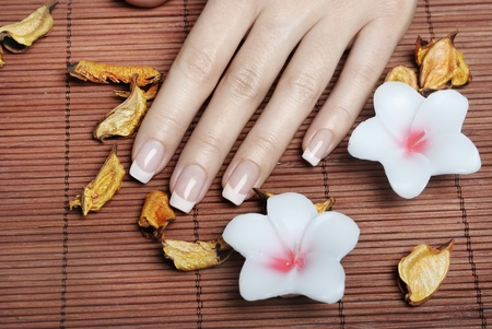 Female hands with french manicure photo