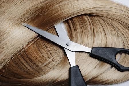 Long healthy blonde hair and professional scissors photo