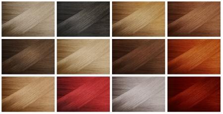 tinte cabello: Conjunto de diferentes colores de pelo muestras Foto de archivo