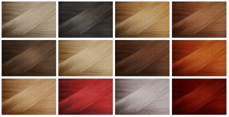 Set of various hair colors samples photo