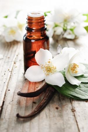 flor de vainilla: El aceite esencial de flor de jazm�n y vainilla Foto de archivo
