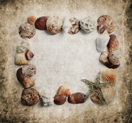 Seashells frame on grungy background photo