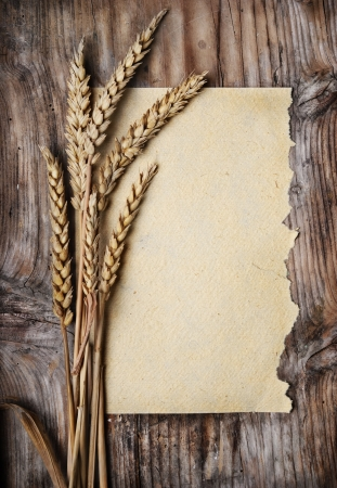 Wheat ears and vintage paper on wooden plank Stockfoto
