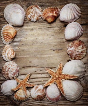 Seashell frame on wooden background photo