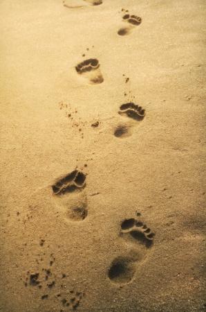 Следы на песке на закате