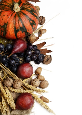pumpkin border: Autumn concept with seasonal fruits and vagetables Stock Photo