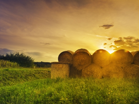 Hay bales at sunset photo