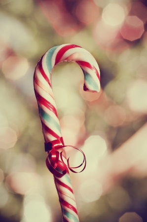 Candy cane in front of christmas lights photo