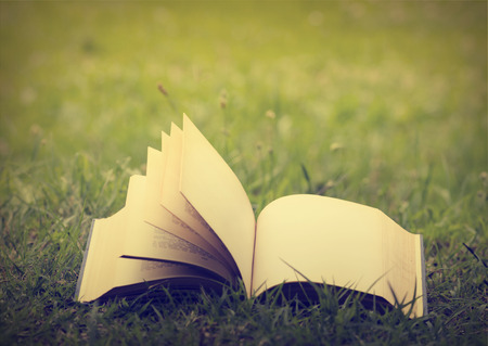 Open book with empty pages in the grass photo