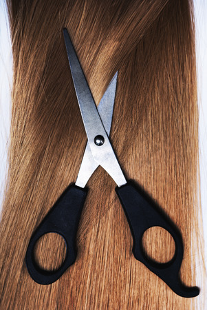 hair dresser: Long healthy blond hair and professional scissors Stock Photo