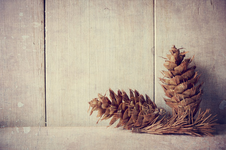 Pine cones on white rustic background with copyspace photo