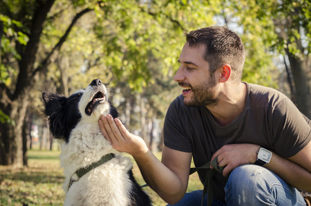 dogs playing: Hombre con su perro jugando en el parque Foto de archivo
