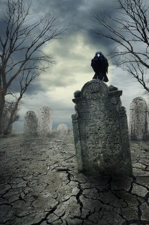 Graveyard с вороной в ночное время. Концепция Хэллоуин.