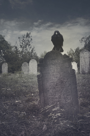 spooky graveyard: Spooky graveyard with crow on tombstone. Halloween concept.