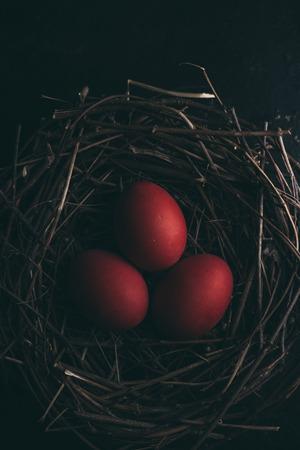 dark red: Red easter eggs in bird nest on dark background. Retro style. Stock Photo