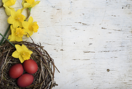 Red easter eggs in bird nest on white wooden background