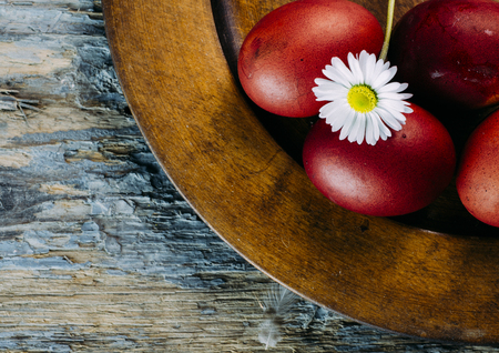 Hand painted red easter eggs and daisy flower closeup on rustic wooden background. Easter still life design.