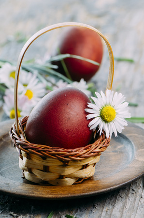 Hand painted red easter egg and daisy flower closeup in rustic wooden basket. Easter still life spring decoration. Traditional hand painted ester eggs.