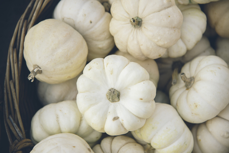 Halloween and thanksgiving pumpkins decoration. Traditional autumn pumpkins background. Seasonal fall holiday concept. Фото со стока