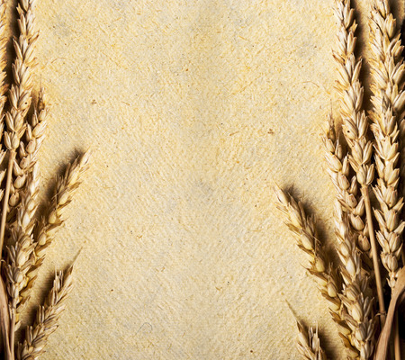 Wheat ears on vintage textured paper background. Whole wheat border from above. Stock Photo