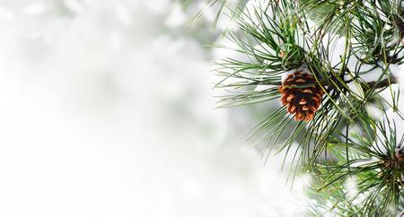 Fondo de frontera de vacaciones de temporada de invierno con árbol de Navidad y primer plano de cono de teléfono. Brunch de abeto con marco de espectáculo sobre fondo bokeh con copyspace. Diseño de tarjetas de Navidad y año nuevo. Foto de archivo