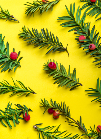 Christmas holiday pattern background. Christmas tree with red decor over pastel yellow background. Top view. Merry christmas and happy new year for 2019.