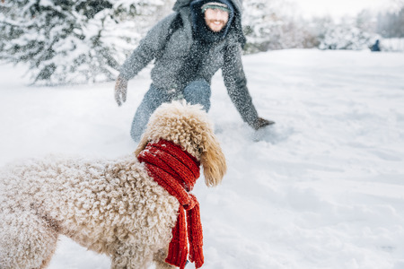 Snowball fight fun with pet and his owner in the snow. Winter holiday emotion. Cute puddle dog and man playing and running in the forest. Film filter image. 스톡 콘텐츠