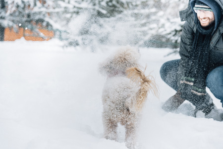 Snowball fight fun with pet and his owner in the snow. Winter holiday emotion. Cute puddle dog and man playing and running in the forest. Film filter image. Banco de Imagens