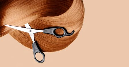 Top view of healthy red hair lock extension and hairdresser scissors on pastel background. Hairdressing tool from above. Professional hairstyle studio backdrop banner design.