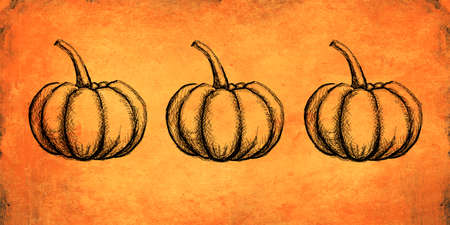 Autumn and thanksgiving orange textured background with hand painted pumpkin illustration. Minimal art seasonal concept. Greeting card and invitation dinner design. Фото со стока