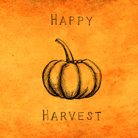 Autumn and thanksgiving orange textured background with hand painted pumpkin. Minimal art seasonal concept. Greeting card and invitation dinner design.